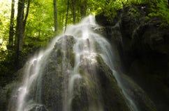 Cascade à écriture ligne par ligne dans une forêt verte Photos libres de droits