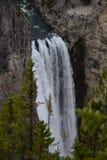 Cascade à écriture ligne par ligne dans Yellowstone Photos libres de droits