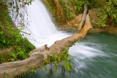 Cascade à écriture ligne par ligne de Cascadas de Agua Azul Images libres de droits