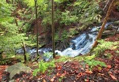 Cascade à écriture ligne par ligne de fleuve de montagne dans la forêt carpathienne sauvage photo libre de droits