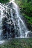 Cascade à écriture ligne par ligne de forêt Photographie stock libre de droits