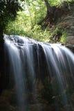 Cascade à écriture ligne par ligne de forêt photos stock