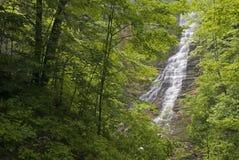 Cascade à écriture ligne par ligne de forêt Photo libre de droits