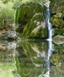 cascade à écriture ligne par ligne de forêt image stock