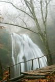 cascade à écriture ligne par ligne de forêt d'automne images stock
