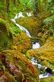 Cascade à écriture ligne par ligne de forêt humide Photographie stock