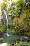 Cascade à écriture ligne par ligne de jungle Photographie stock libre de droits