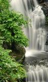cascade à écriture ligne par ligne de l'eau de la Pennsylvanie d'intervalle de forêt du Delaware Photographie stock libre de droits