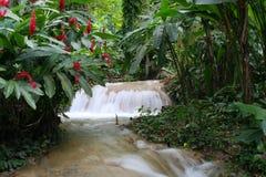 Cascade à écriture ligne par ligne de la Jamaïque Photo stock