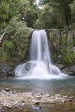 Cascade à écriture ligne par ligne de la Nouvelle Zélande Photo libre de droits