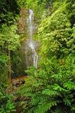 Cascade à écriture ligne par ligne de Maui, Hawaï Photos libres de droits