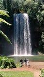 Cascade à écriture ligne par ligne de Milla Milla - Australie photographie stock