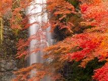 Cascade à écriture ligne par ligne de Minoh en automne photographie stock libre de droits