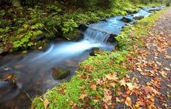 Cascade à écriture ligne par ligne de montagne d'automne Photos libres de droits
