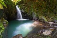 Cascade à écriture ligne par ligne de paradis dans la jungle photographie stock