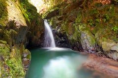 Cascade à écriture ligne par ligne de paradis dans la jungle Photographie stock libre de droits