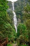 Cascade à écriture ligne par ligne de piste de Milford, Nouvelle Zélande Images stock