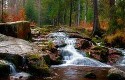 Cascade à écriture ligne par ligne de rivière dans la forêt Photo libre de droits