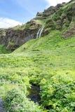 Cascade à écriture ligne par ligne de Seljalandsfoss en Islande Images stock