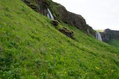 Cascade à écriture ligne par ligne de Seljalandsfoss en Islande Images libres de droits