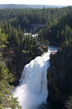 Cascade à écriture ligne par ligne de stationnement national de Yellowstone images libres de droits