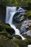 Cascade à écriture ligne par ligne de Triberg Image libre de droits