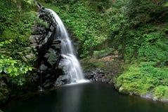 cascade à écriture ligne par ligne de vallée du Japon mie de fudo de daki Photos libres de droits