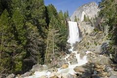 Cascade à écriture ligne par ligne de Yosemite Images libres de droits