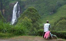 Cascade à écriture ligne par ligne du Devon au Sri Lanka Photo stock