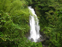 Cascade à écriture ligne par ligne du Dominica Photo stock