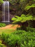 cascade à écriture ligne par ligne du Queensland de beautifull de l'australie Image stock