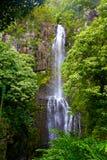 Cascade à écriture ligne par ligne en Hawaï photos stock