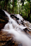 Cascade à écriture ligne par ligne en parc naturel Photos libres de droits
