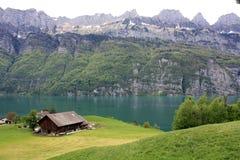 Cascade à écriture ligne par ligne en Suisse Photos libres de droits