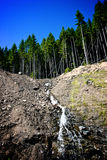 Cascade à écriture ligne par ligne et arbres à la rue Helens de Mt Photographie stock