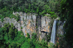 Cascade à écriture ligne par ligne et falaises, Springbrook, Australie Photos stock