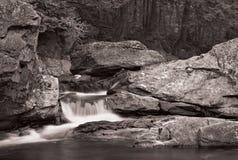 Cascade à écriture ligne par ligne et forêt dans B&W Photos stock