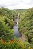Cascade à écriture ligne par ligne et vallée 1 d'Hawaï Photos stock