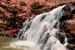 Cascade à écriture ligne par ligne. Forêt d'automne Photos stock