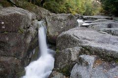 Cascade à écriture ligne par ligne fraîche 2 de ruisseau de montagne Photo libre de droits