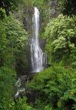 Cascade à écriture ligne par ligne (Hawaï) photos stock