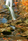 Cascade à écriture ligne par ligne II d'automne Image libre de droits