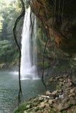 Cascade à écriture ligne par ligne Misol-Ha sur Chiapas Photo stock
