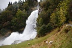 Cascade à écriture ligne par ligne norvégienne Images stock