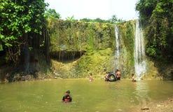 cascade à écriture ligne par ligne profonde de forêt Photo stock