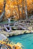 Cascade à écriture ligne par ligne profonde de forêt d'automne Images stock