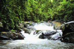 Cascade à écriture ligne par ligne profonde de forêt dans Huahin Image libre de droits