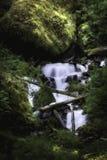 Cascade à écriture ligne par ligne rêveuse Photo stock