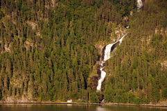 Cascade à écriture ligne par ligne sur Hardangerfjord, Norvège Image libre de droits