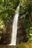 Cascade à écriture ligne par ligne sur l'île de Bequia Photographie stock libre de droits